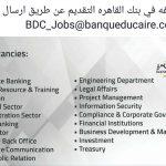 وظائف بنك القاهرة للخريجين والخبرات لعام 2017