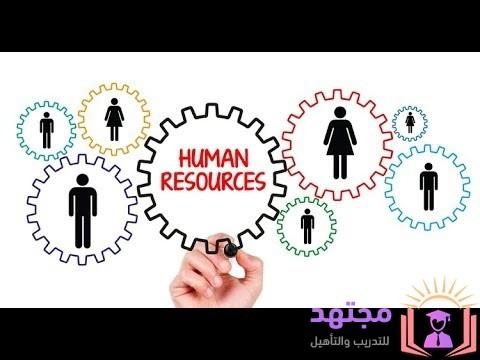 ما هو ال HR ؟ وازاى ابدأ اشتغل فى مجال الموارد البشرية , و ماهى اقسام الموارد البشرية - مجتهد