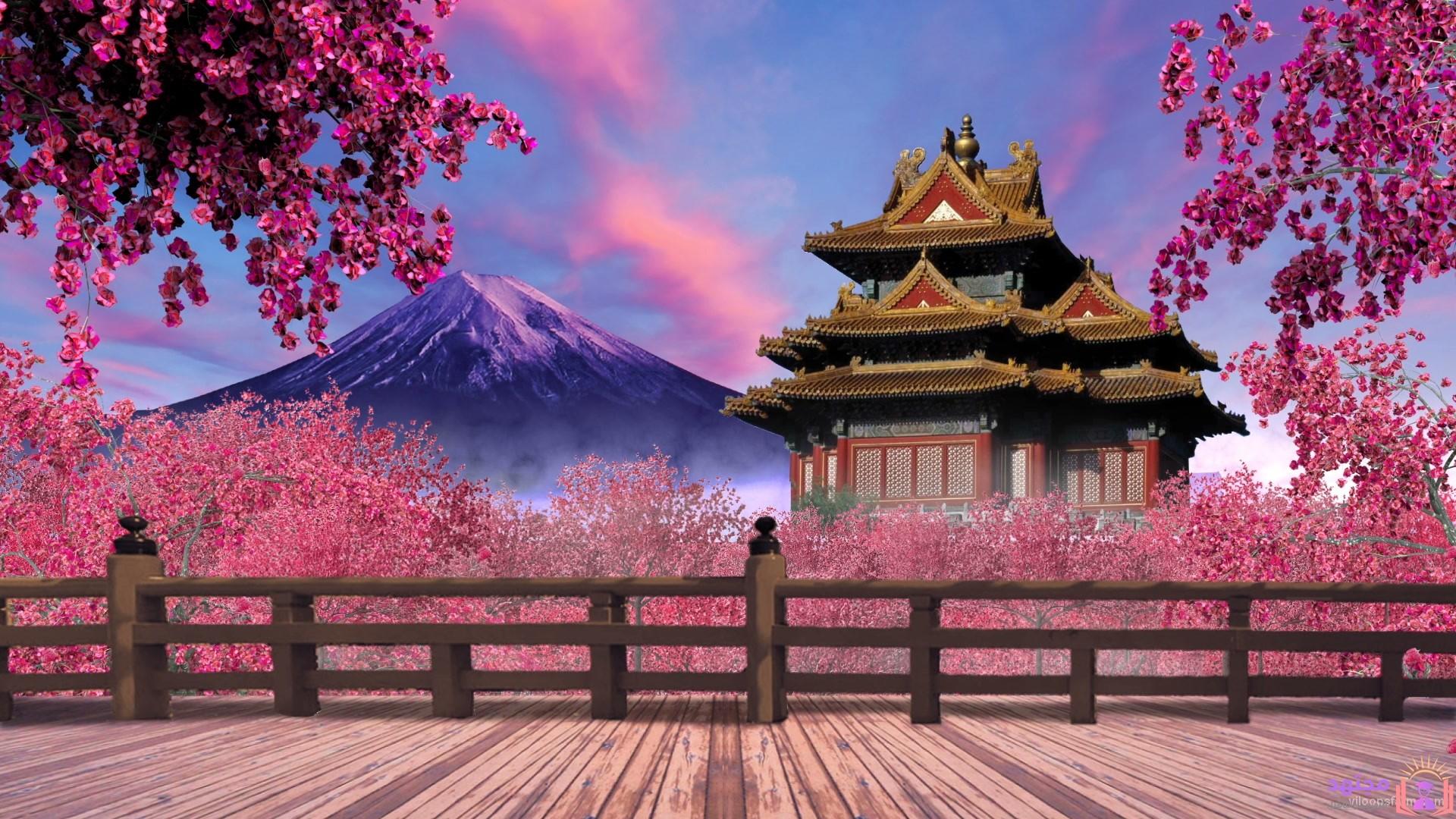 تعلم اللغة اليابانية , تعليم اللغة اليابانية , تعلم اليابانية ,