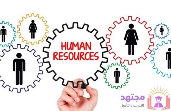 الموارد البشرية ما هي الموارد البشرية ما هو hr ادارة الموارد البشرية موارد بشرية تعريف الموارد البشرية ماهي اقسام الموارد البشرية ما هو ال hr وظيفة الموارد البشرية وظائف ادارة الموارد البشرية منتدى الموارد البشرية المنتدى العربي للموارد البشرية ما هو الاتش ار اساسيات ال hr