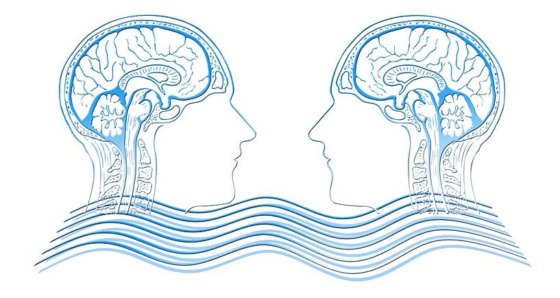 انواع الشخصيات في علم النفس